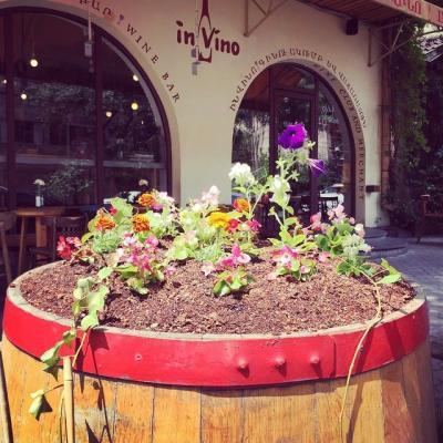 ին վինո բար վաճառատուն գինիների ակումբ бар магазин винный клуб ин вино in vino bar merchant wine club