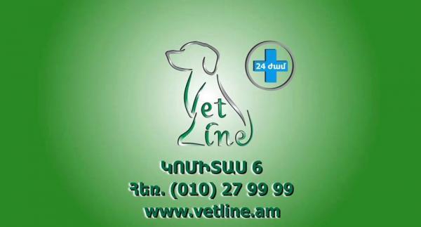 վետլայն անասնաբուժական կլինիկա ветеринарная клиника ветлайн vetline veterinary clinic
