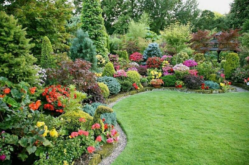 կանաչ աշխարհ բույսերի խանութ